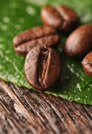 Coffee beans with freen leaf on the wooden board Stock Photo - 16963461