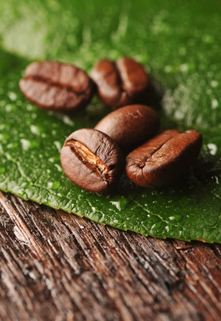 Coffee beans with freen leaf on the wooden board Stock Photo - 16963464