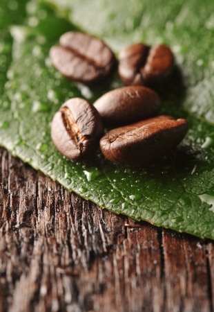 Coffee beans with freen leaf on the wooden board Stock Photo - 16963445