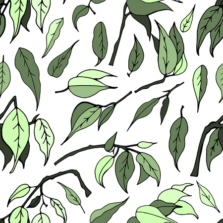 Seamless pattern with leaves of ficus benjamin on white background Иллюстрация