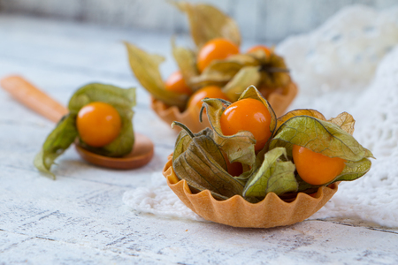 Fresh physalis in a tartlet on a white wooden table