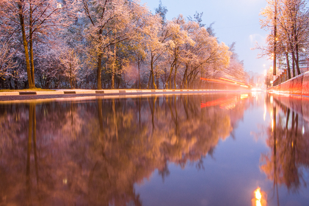 Winter trees and reflections in winter