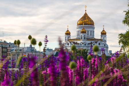 Moscow, Russia, 22 june, 2016 - The Savior among lupines