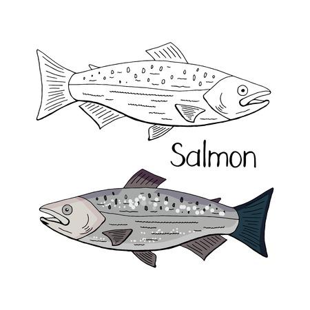 Poisson saumon dessiné à la main en noir et blanc et couleur isolé sur fond blanc.