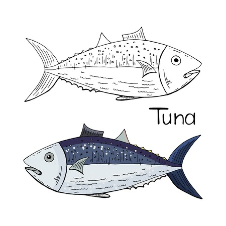 Hand drawn tuna fish black and white and color isolated on white background.