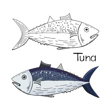 Handgezeichnete Thunfisch schwarz und weiß und Farbe auf weißem Hintergrund.