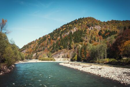 View of the river in the mountains in the middle of autumn trees. Autumn high in the mountains, autumn landscape