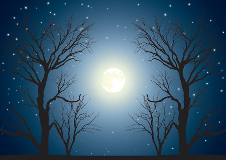 Landscape with trees on a background of the sky in a full moon Illustration