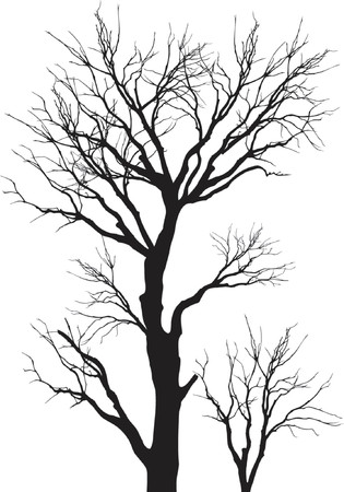 vector illustration intricate detailed tree branches silhouette Illustration