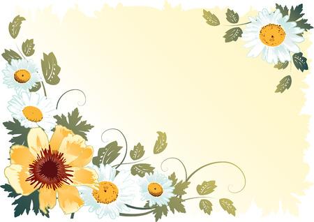 wild botany: flower background 3