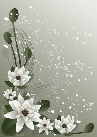 꽃이 만발한: Vector illustration -  fine blossoming lotus