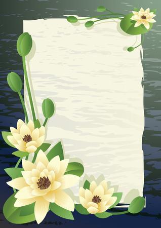 water lilies: Ilustraci�n vectorial - multa florecimiento de loto