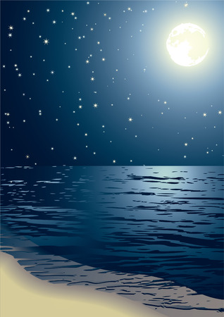 moon night: Vector illustration - the seacoast shined by the full moon