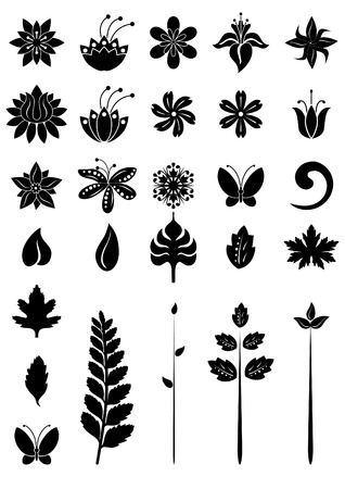 Vector illustration - floral dezign elements Illustration