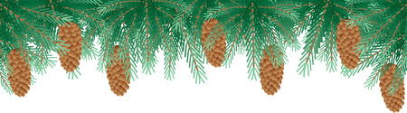 Pine branches Vector