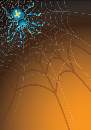 crawly: Vector illustration -  Web with a spider Illustration