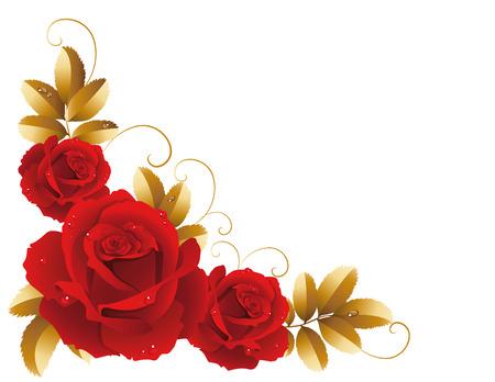retro vector: Vector illustration - fine blossoming roses Illustration