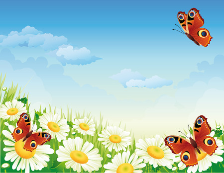 Vector illustration - landscape whis butterfly and flowers