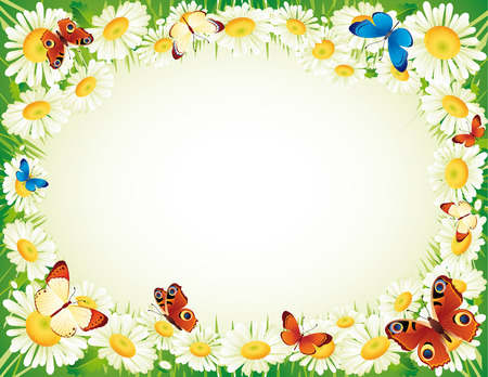 herb garden: Vector illustration - frame whis butterfly and flowers