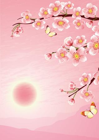 Vector illustration -  cherry blossom
