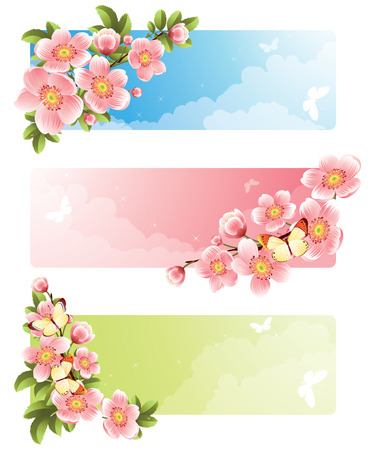 Vector illustration -  Flower banners Vector