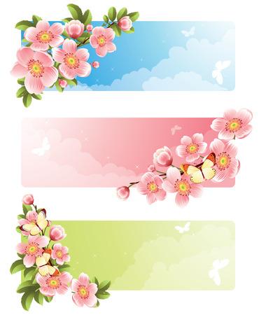 Vector illustration -  Flower banners