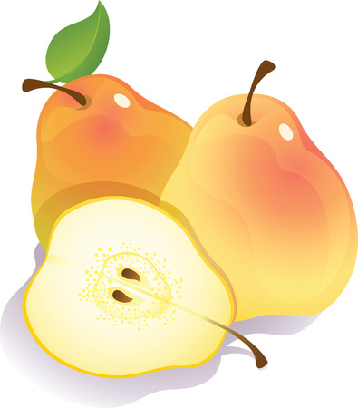 Vector illustration - three ripe pears