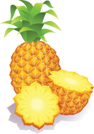 Vector illustration - ripe pineapples