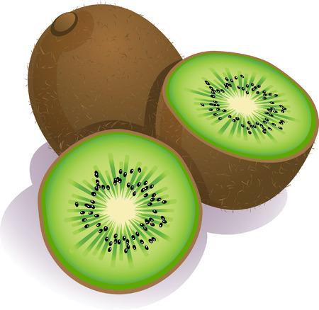 Vector illustration - ripe kiwi