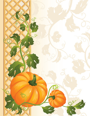fale: Vector illustration -  pumpkin background