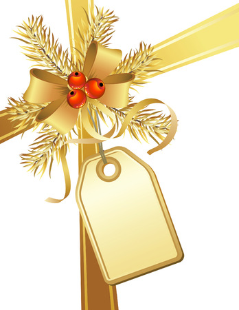 vector illustrations - christmas gift Vector