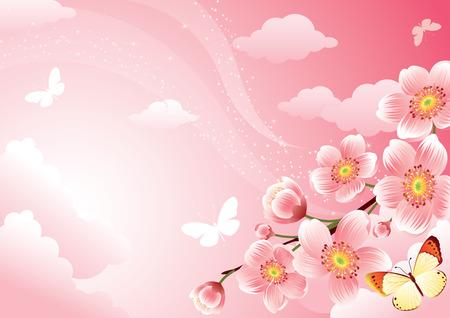 Vector illustration - Cherry blossom background