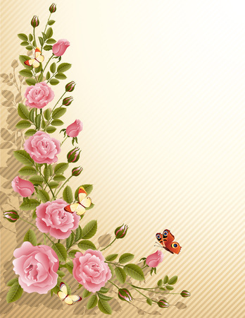 Vector illustration - fine blossoming roses Illustration
