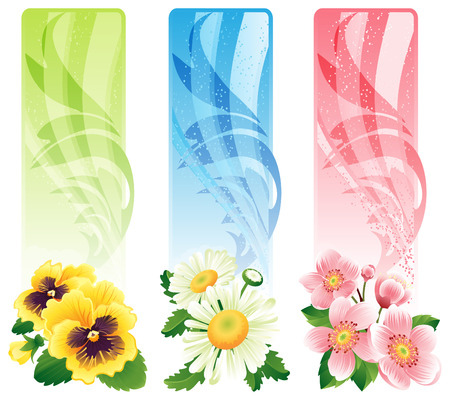 pansy: Vector illustration - Flower banners
