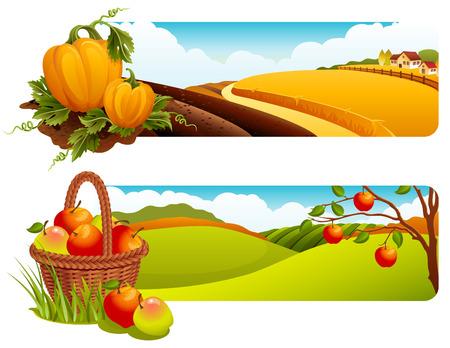 albero di mele: Vector illustration - banner paesaggio rurale Autunno