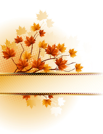 leafage: illustration - autumn background with maple branch