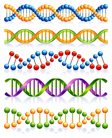 dna helix:  illustration - DNA strands Illustration
