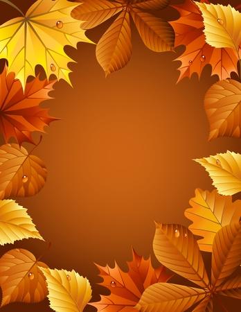 ベクトル イラスト - 秋の葉の背景