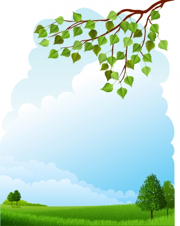 図 - 夏の風景 - 牧草地と木々