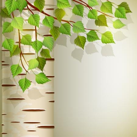 ベクトル イラスト - バーチ、EPS 10 RGB 使用透明な背景とブレンド モード