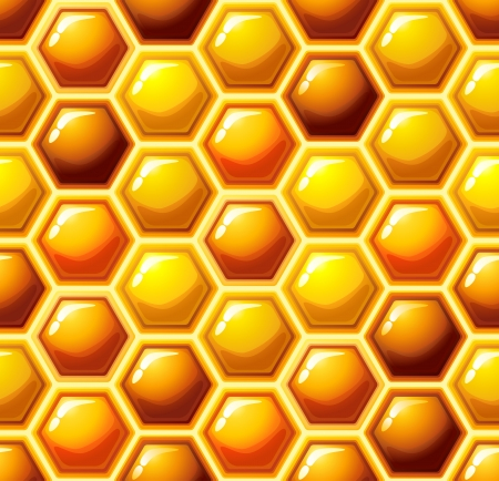 Vector illustration - honeycomb seamless pattern Stock Vector - 14780643