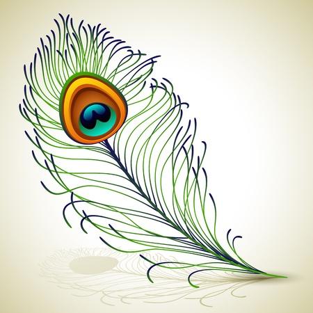 ベクトル イラスト - 孔雀の羽、EPS RGB 10。ブレンド モードと透明度を使用