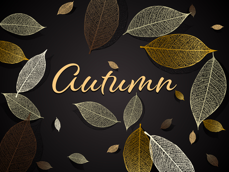 Vector illustration - autumn background with skeleton leaves. EPS 10