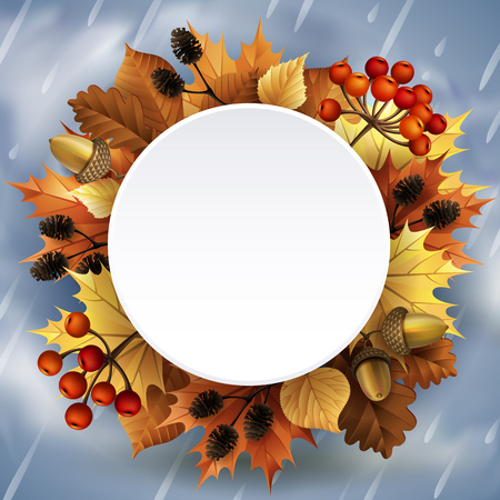 Vector illustration - Autumn background with leaves, berries, acorns and cones. EPS 10