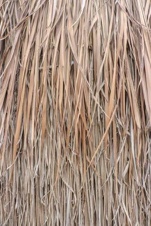 hayrick: Close up straw background. Texture of straw - Background, Wallpaper Stock Photo