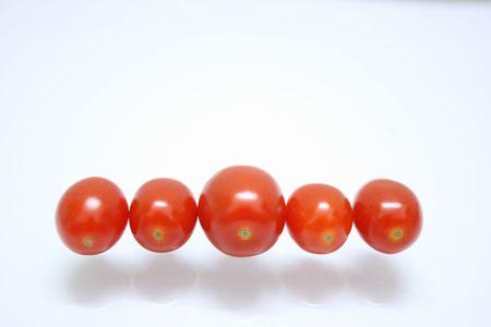 aligned: Tomatoes aligned