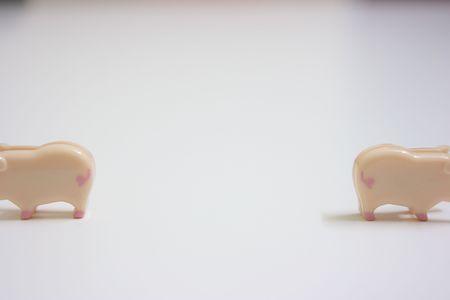 Two swines walk away in opposite direction photo