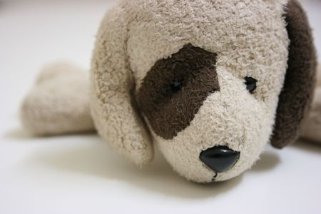 Stuffed toy dog,close up Stock Photo