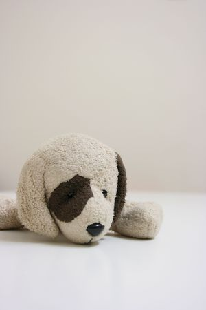 bore: Stuffed toy dog lying Stock Photo