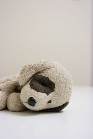 Stuffed toy dog lying Stock Photo